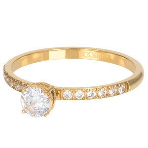 iXXXi XS Ring 2mm Queen Goudkleurig