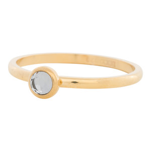 iXXXi Ring 2mm Edelstaal Goudkleurig Natuursteen White